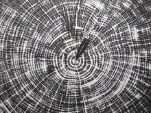 Load image into Gallery viewer, Original Woodcut Tree Ring Print (24x30)