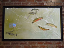 Load image into Gallery viewer, Brookies, Brownies, and American Pondweed. Professionally Framed and to hang.