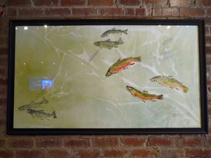 Brookies, Brownies, and American Pondweed. Professionally Framed and to hang.