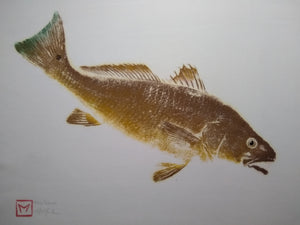 Red Drum (Redfish)  Original Gyotaku 24x30