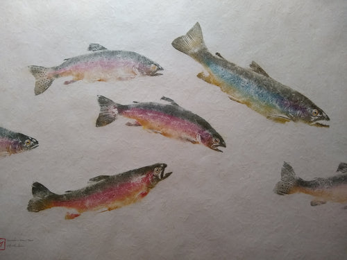 School of Brown and Rainbow Trout. Original gyotaku on kinwashi.  40x32