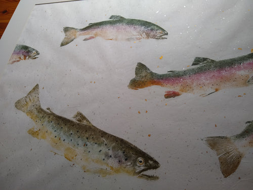 School of Brown and Rainbow Trout. Original gyotaku on gold and silver leaf chiri paper. 40x32