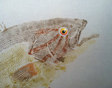 Load image into Gallery viewer, Smallmouth Bass Gyotaku Muslin