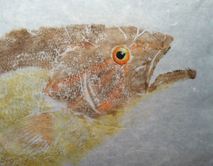 Smallmouth Bass Original Gyotaku