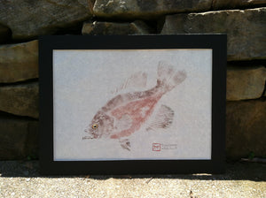 "Beautiful 16"" Black Crappie Gyotaku--Original"