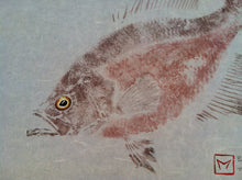 Load image into Gallery viewer, Crappie Gyotaku
