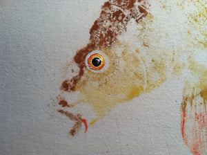 Original Carp Gyotaku on Silver Unryu (32x40)