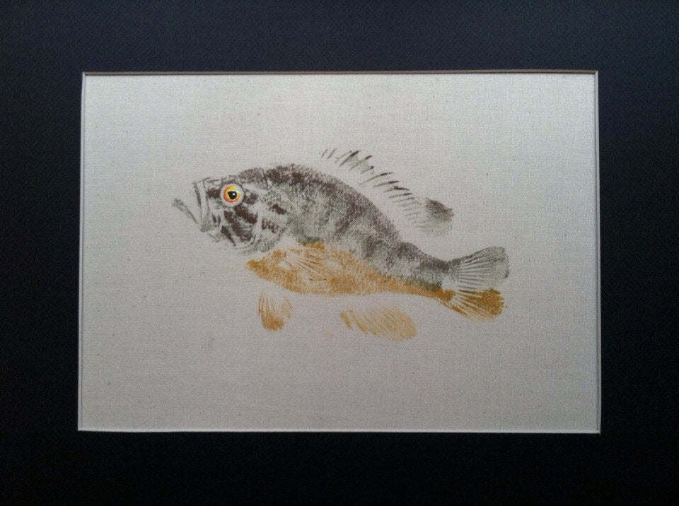 Warmouth Sunfish Original Gyotaku