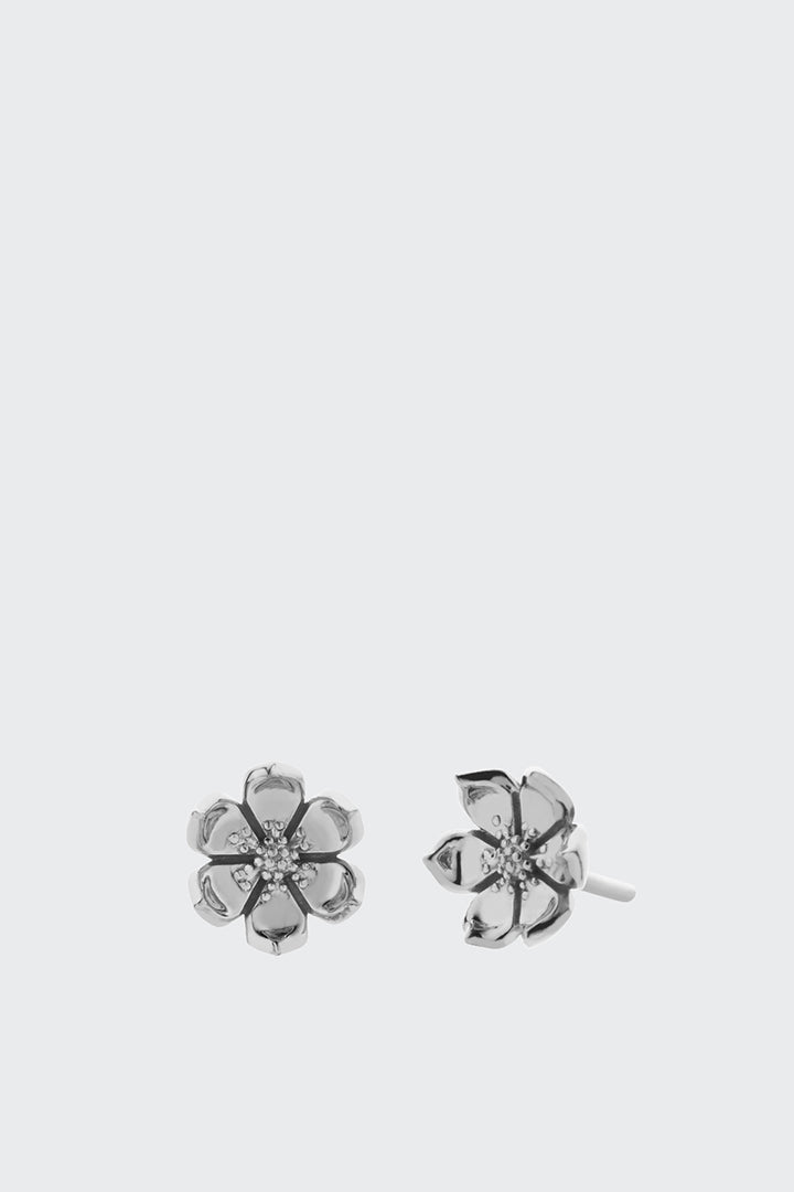 Meadowlark Eden Stud Earrings - silver | GOOD AS GOLD | NZ