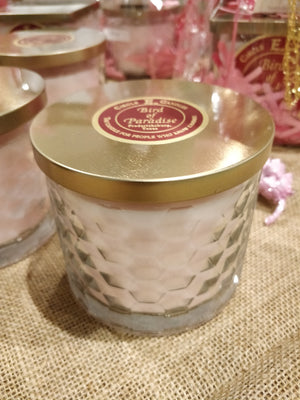 Circle E 17 ounce Premium Blend Candles (New)