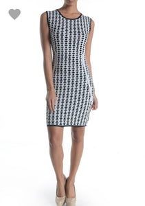 Black and White Aryeh Dress