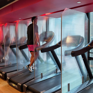 Protective Gym Screens