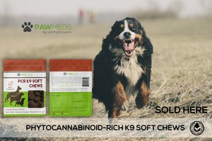 3-Pack Soft Chews Bundle
