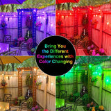 UNTCENT Vintage Seasons LED Warm White RGBW Color Changing String Lights, 48ft