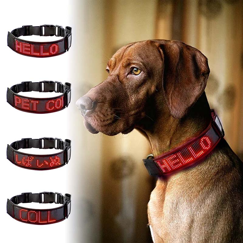 LED Dog Collar Light Flash Leopard Collar Puppy Night Safety Pet Rechargeable Programmable Scrolling Text Display Clearly Led
