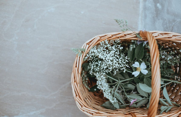 American Gypsy Herbalist- Basket of Plants photo from unsplash.com
