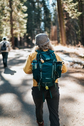 American Gypsy Herbalist- People Hiking in Woods photo by tyler nix from Unsplash.com