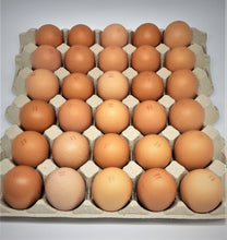 Load image into Gallery viewer, Farm Fresh Eggs - Tray 30 - 800g+ - Mussett Holdings