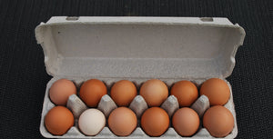 Farm Fresh Eggs - Carton 12 - 800g+