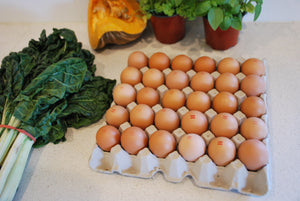 Farm Fresh Eggs - Tray 30 - 800g+ - Mussett Holdings