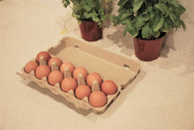 Load image into Gallery viewer, Farm Fresh Eggs - Carton 12 - 800g+ - Mussett Holdings