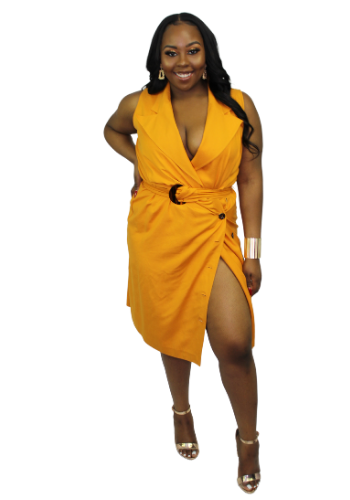 The Mustard Silk Dress