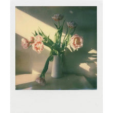 Load image into Gallery viewer, Polaroid Originals Color i-Type Instant Film (8 Exposures)