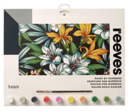 Reeves Tropical Flowers Large Paint By Numbers