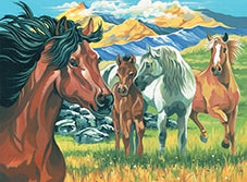 Reeves Wild Horses Large Paint By Numbers