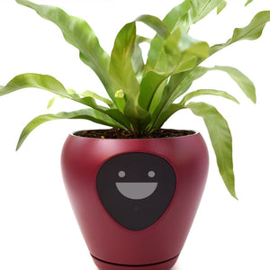 The Smart Planter™ with Feelings