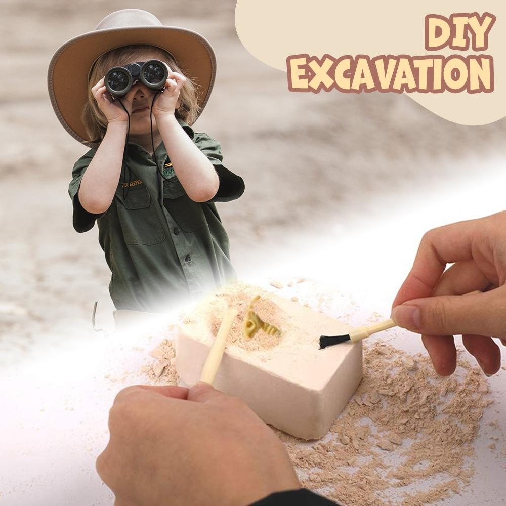 DIY Excavation Kit