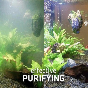 Aquatic Algae Control Purifier