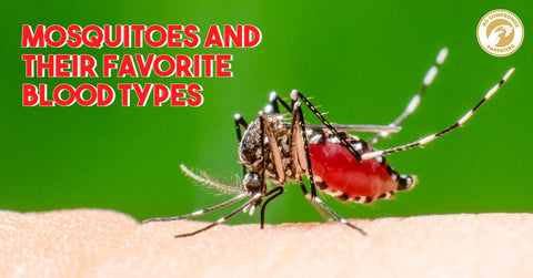 Mosquitoes and Their Favorite Blood Types