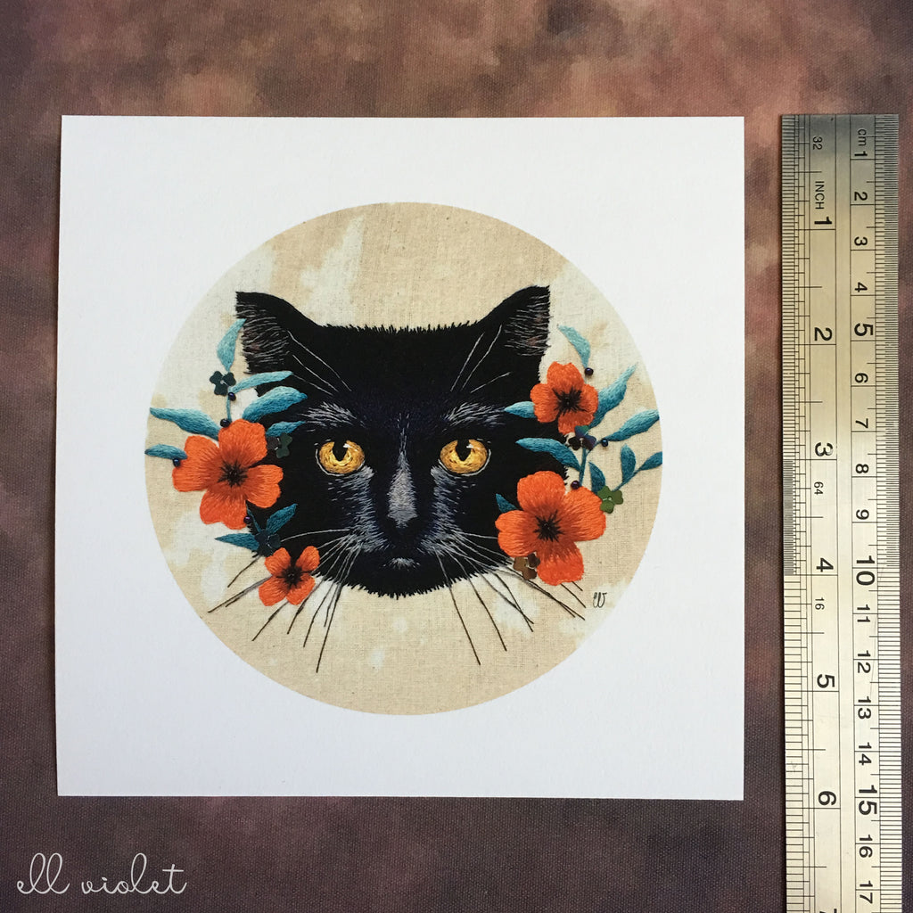Black Cat 6x6 Inch Fine Art Giclée Print