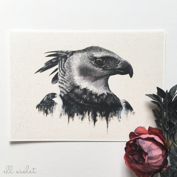 "Harpy Eagle 5x7"" Fine Art Giclée Print (Seconds)"