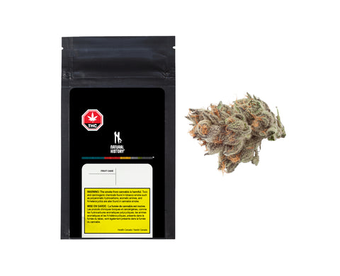 NATURAL HISTORY FRUIT CAKE (H) DRIED - 3.5G