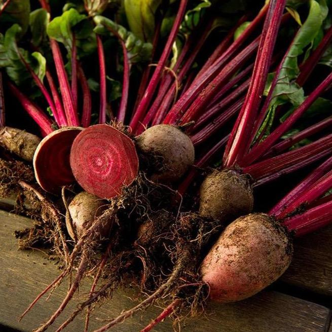 Beetroot (500g) - Romaine Calm Scotland
