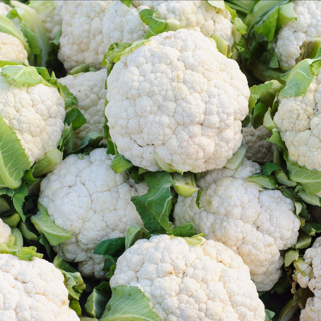 Cauliflower (Single) - Romaine Calm Scotland
