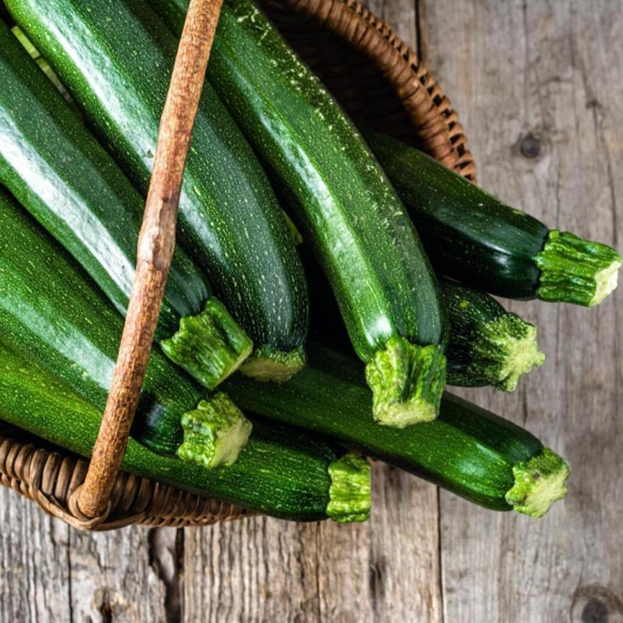 Courgette (3 pack) - Romaine Calm Scotland