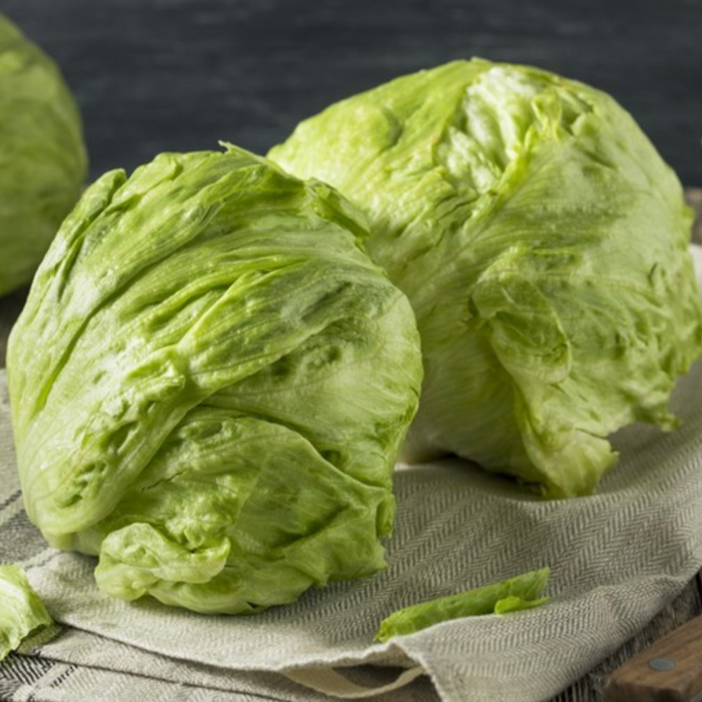 Iceberg Lettuce - Romaine Calm Scotland
