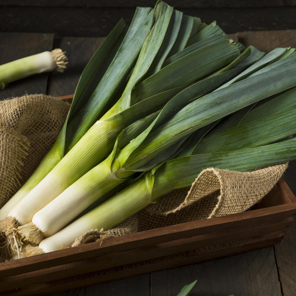 Leeks (3 stalks) - Romaine Calm Scotland