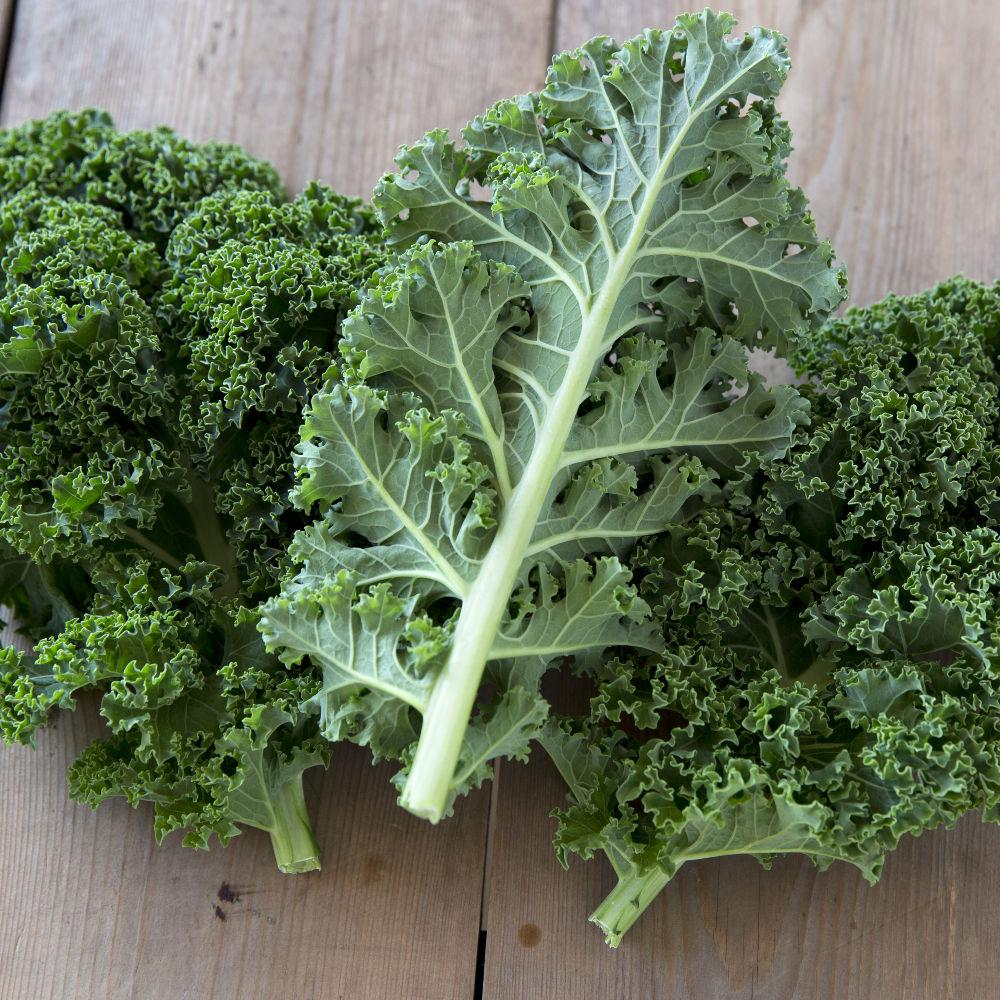Scottish Kale 250g - Romaine Calm Scotland