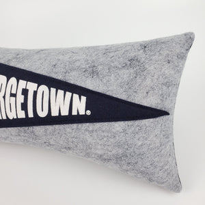 Custom order for Lauren -- Georgetown Pennant Pillow