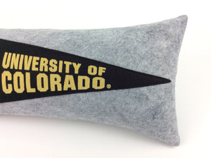 Custom order for Jennifer -- Pennant Pillow