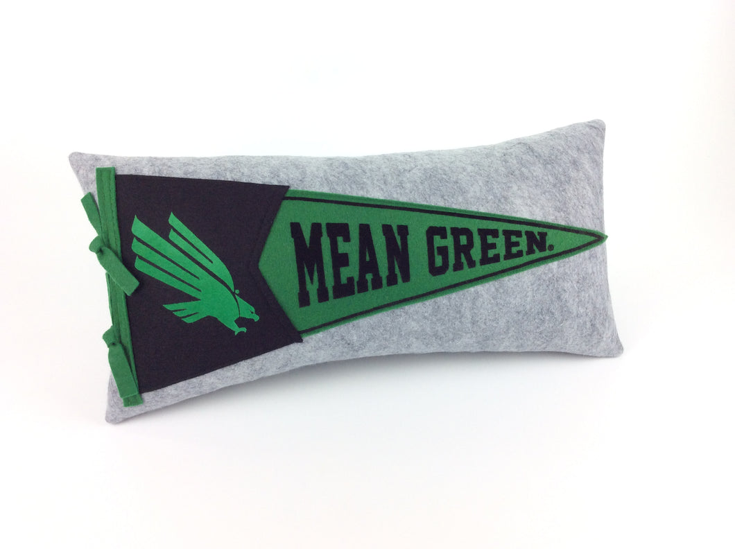 Custom order for Robin -- North Texas Pennant Pillow