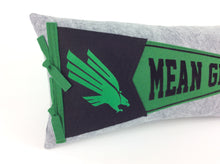 Load image into Gallery viewer, Custom order for Robin -- North Texas Pennant Pillow
