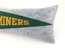 Load image into Gallery viewer, Missouri S&T Pennant Pillow -Large