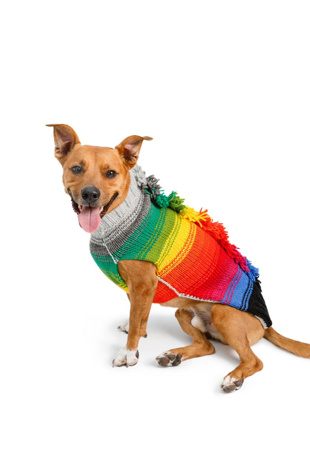 Chilly Dog Mohawk Sweater Rainbow