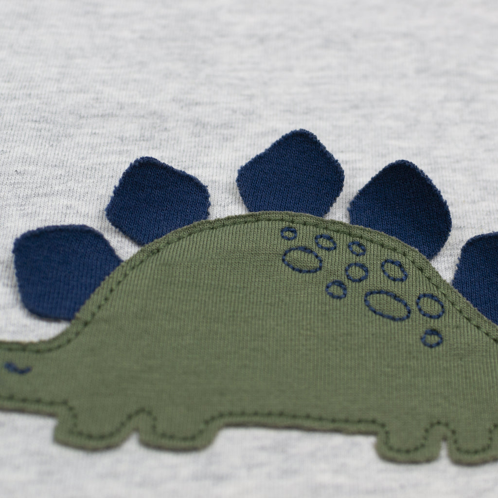2-Pack Short Sleeve Tees in Dinosaur Print