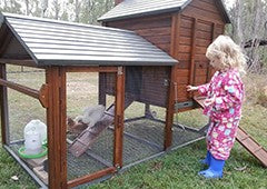 A chicken coop tractor keeps your chickens safe and happy
